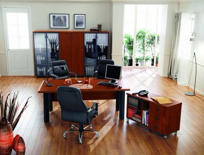Мебель для руководителя фото 4